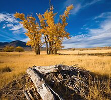 Eastern Sierra by Lawrence Yeung