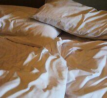 bedhead morning by Jodi Fleming