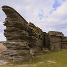 Dartmoor: The Thurlestone at Watern Tor by Rob Parsons