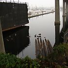 Beneath the Ballard Bridge by Honario