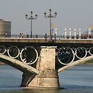 the famous Triana bridge by fototaker