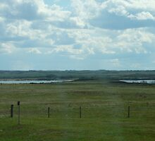 Pasture Land As Far As The Eye can See by MaeBelle