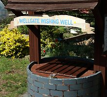 Wellgate Wishing Well by WellgateFarm