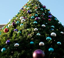 Giant Christmas Tree by Terry Runion