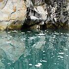 Reflective Memories - Kenai Peninsula Alaska by Barbara Burkhardt