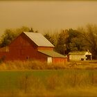 American Farm by MaryGerken