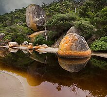 Tidal River reflection - Wilsons Prom by Hans Kawitzki