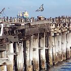 Containerisation ... the end of Princes Pier by Ell-on-Wheels