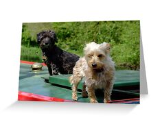 Canal canines Greeting Card
