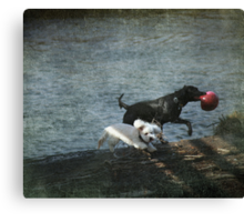 Play Date Canvas Print