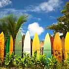 Surfboards on Maui, HI (USA) by Andrey Popov
