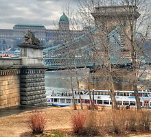 Buda Castle and the Szechenyi Chain Bridge by zumi