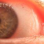 Aye' Eye. by Ryan Gilmour