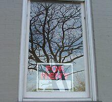 For Rent by Lesley Rosenberg