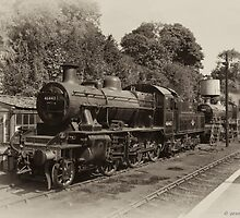 At Rest at Bewdley by David J Knight
