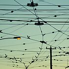 Wires & Sky by LeedenMoon