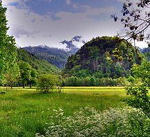 Spring at German Countryside by Daidalos