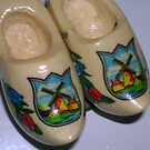 clogs by sharon wingard