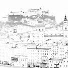 Overcast Winter Day in Salzburg by Kasia Nowak