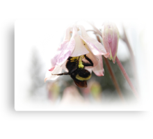 Busy Busy Little Bumble Bee Canvas Print