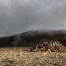 Stybarrow Dodd  by David Robinson