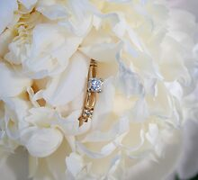 Will  You Marry Me? by DebbieCHayes