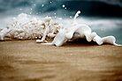Splash! by Paul Manning