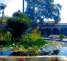 Mission San Juan Capistrano - Reflecting Fountain by Cupertino