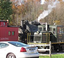 Two RR critters of years past... by Brian  H.
