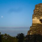 Temple I at Tikal by Sheil Naik