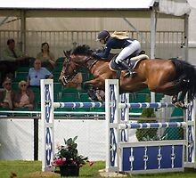 Show Jumper. Flying. by Country  Pursuits