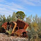 Rusting Gracefullly - Lightning Ridge NSW Australia by Bev Woodman
