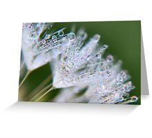 A Delicate Touch Greeting Card
