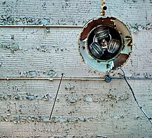 Ceiling Fan by Earth Intruder