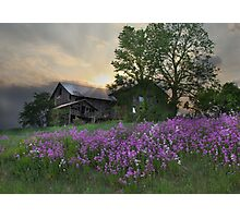 Country Living Photographic Print
