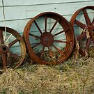 Old Wheels by Sally Winter