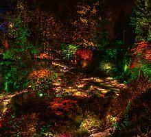 Sunken Lights by chuckington