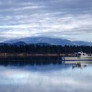 Mount Wellington by CezB