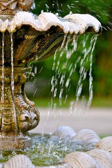 Splish Splash! by Ainsley Kellar Creations