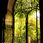 Moorish Garden by ferryvn