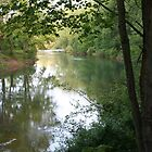 The Creek in Evening by teresa731