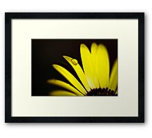 Summer is Coming 3 Framed Print