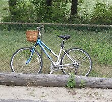 Blue Bike  by Margie Avellino