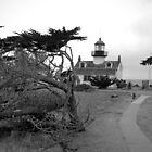 Point Pinos Lighthouse by Niek Broens