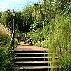 Stairway to Serenity by Debbie Moore