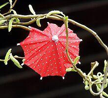 Cocktail Umbrella by villrot