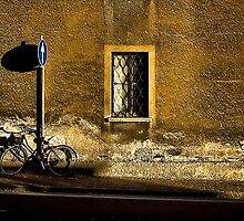 Shadows of Como by Paul Louis Villani