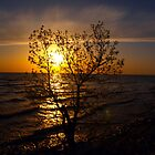 grand marais sunset by Cheryl Dunning