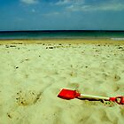 lonely red spade by Lisa Byrne