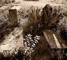 Rough Cemetary by Jim Haley